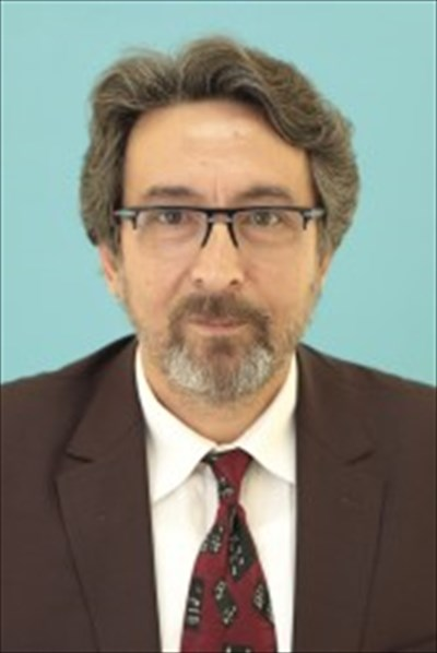Profesör MEHMET TEKTAŞ